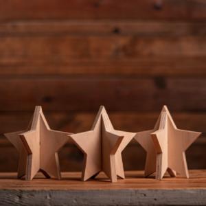 raw wood slotted stars set of 3