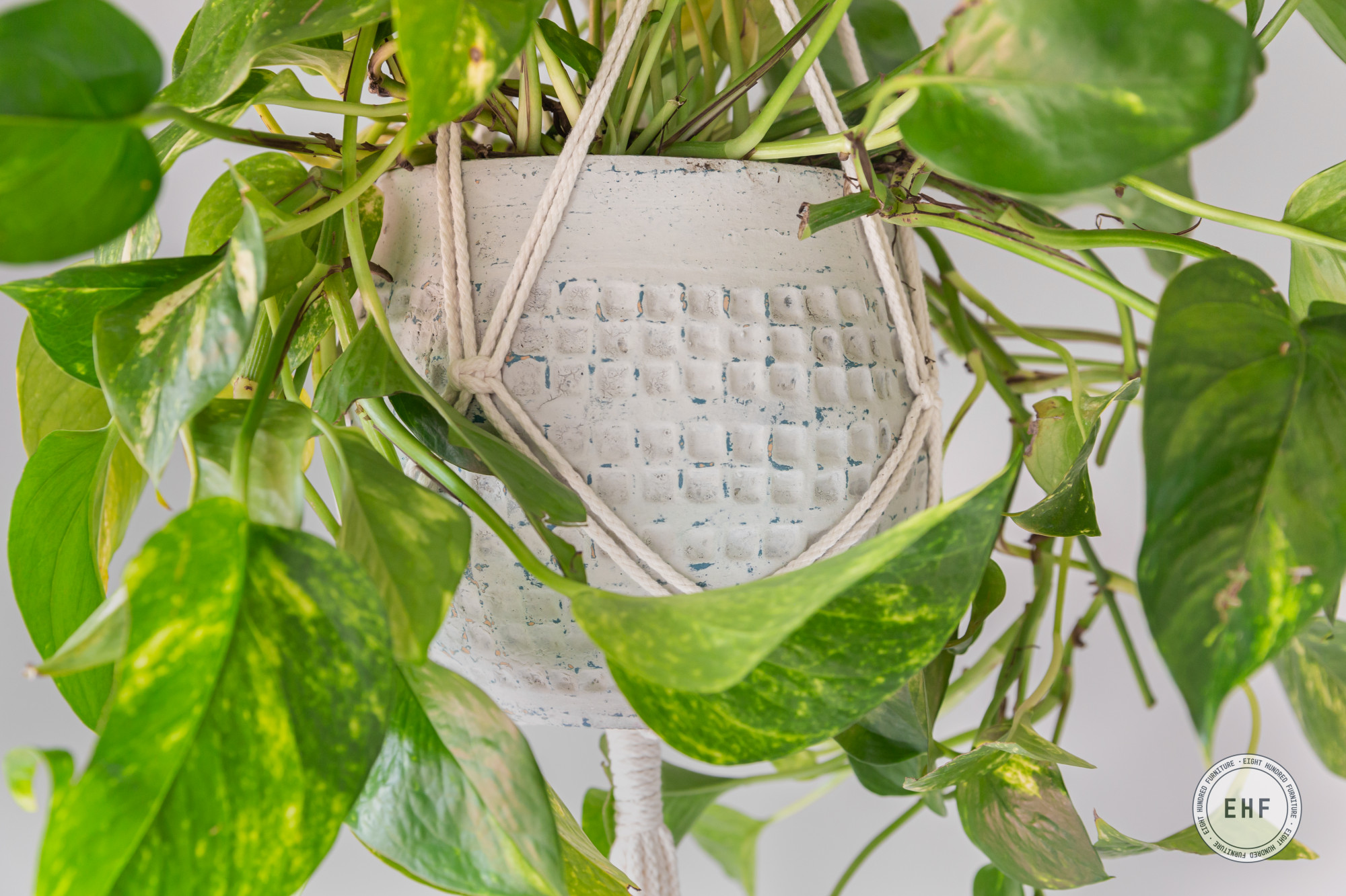 Close up of honeycomb pattern on pot in macrame plant hanger painted in Mora MMS Milk Paint